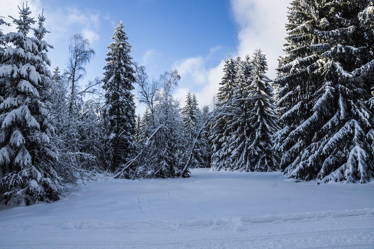 winter-1119284_1280