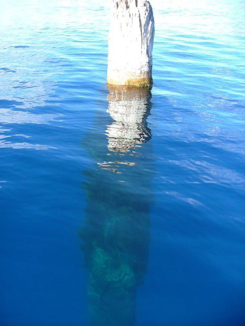 Picture of the 'Old Man of the Lake' (September 13, 2005).Source