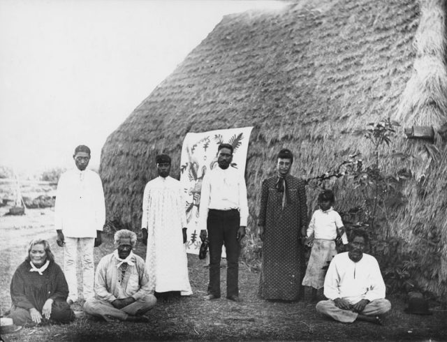 A group of men, women and a girl, standing and sitting in front of a thatched dwelling in 1885. A decorative cloth is attached to the thatched wall behind them.  This photo was taken by Francis Sinclair. Grass houses called Halepili were one of the last vestiges of Hawaiian culture in 1893