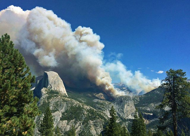 A meadow fire burns in Yosemite National Park.