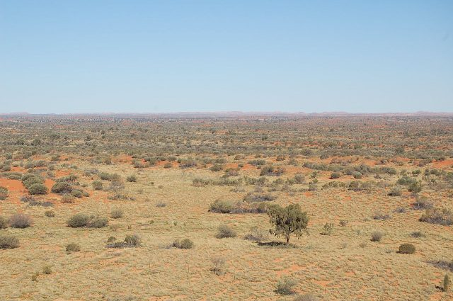 A landscape from the edge of the Simpson Desert / Photo credit