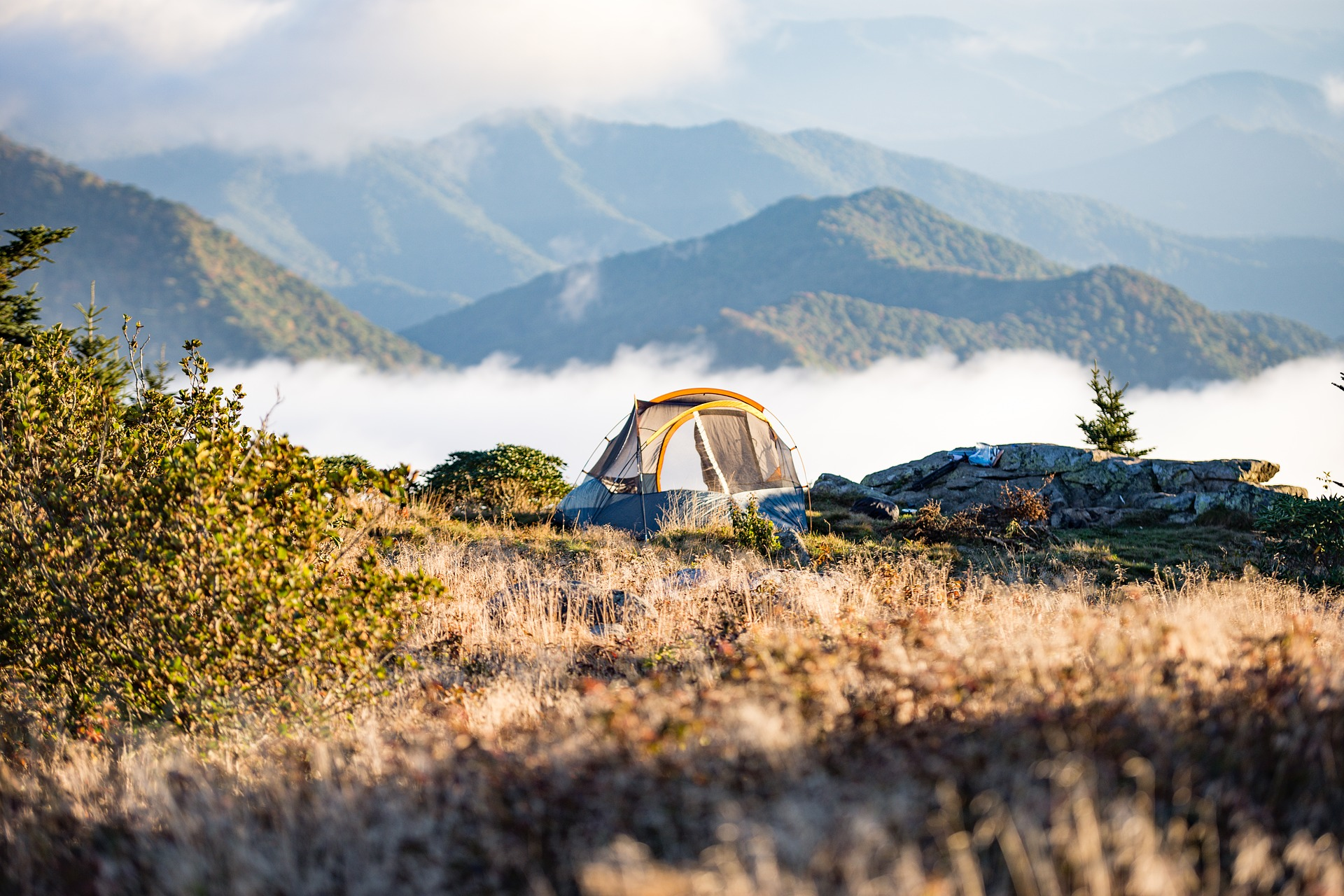 Free camping is everywhere