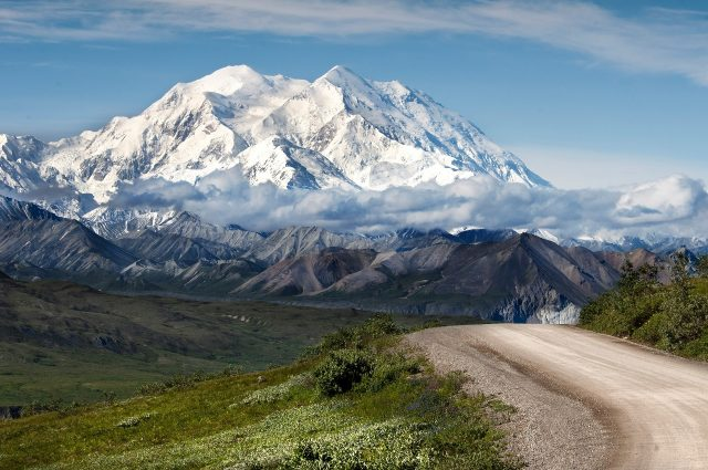 Denali National Park and Preserve has so much to offer