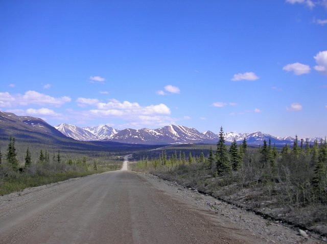 Indulge in a road trip through Denali Highway