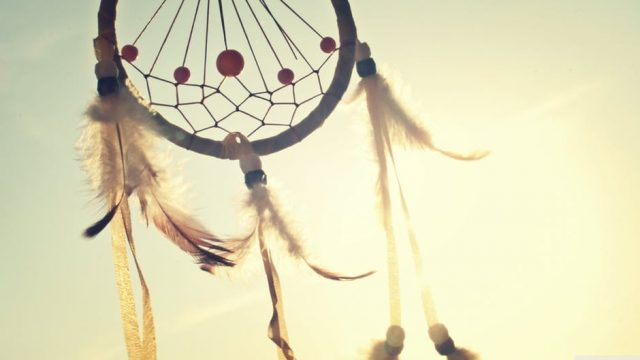 Feathers / dream catcher