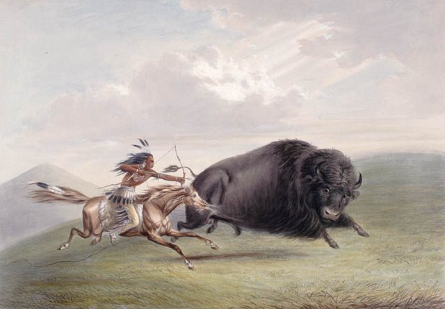 Hunting Bison in USA by George Catlin – Library and Archives Canada