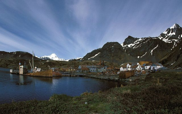 View of Grytviken. Photo credit