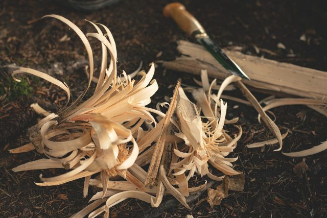 Dry shavings for a tinderbox