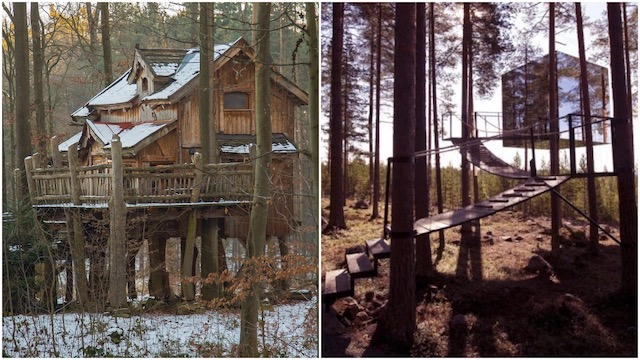 Adventures in a treehouse