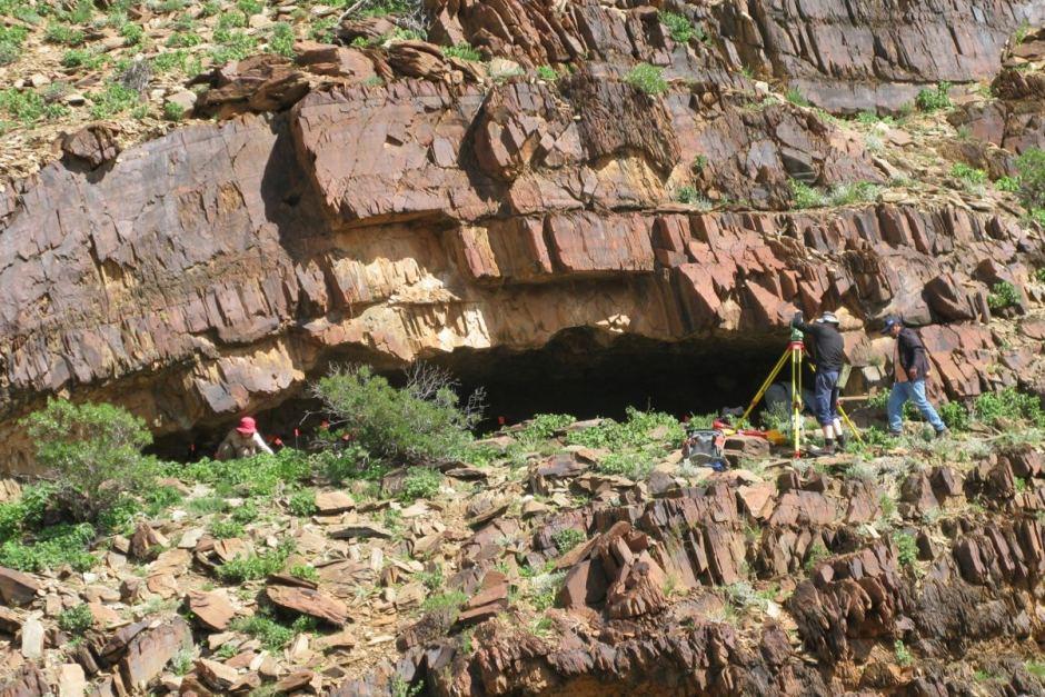 Warratyi rock shelter. ABC News/Giles Hamm