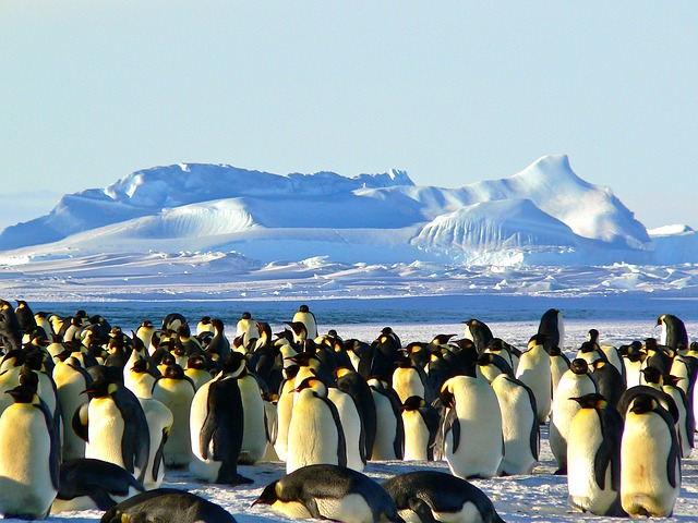 Antartica - For some serious adventuring