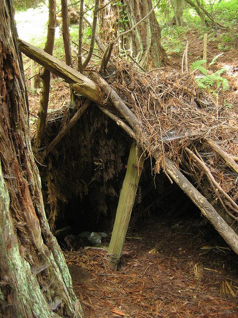 inside the lean-to shelter – Author: Erik Fitzpatrick – CC BY 2.0
