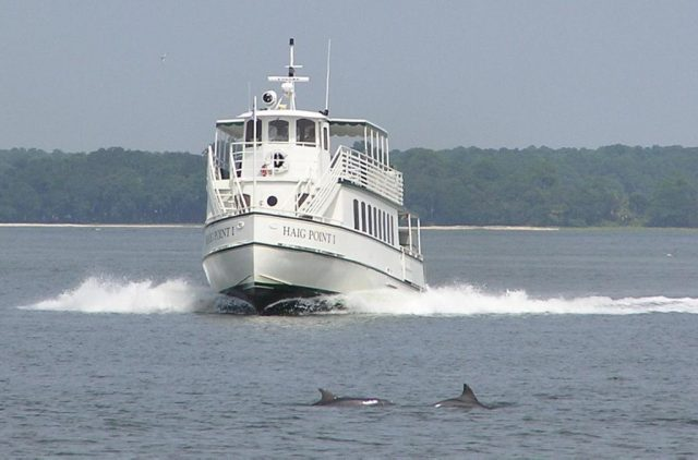 Dolphins gliding in front of the Haig Point private ferry – Author: Jeff Morgan – CC BY 2.5