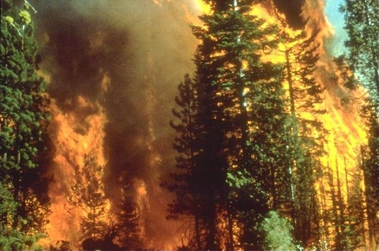 A wildfire in California on September 5, 2008