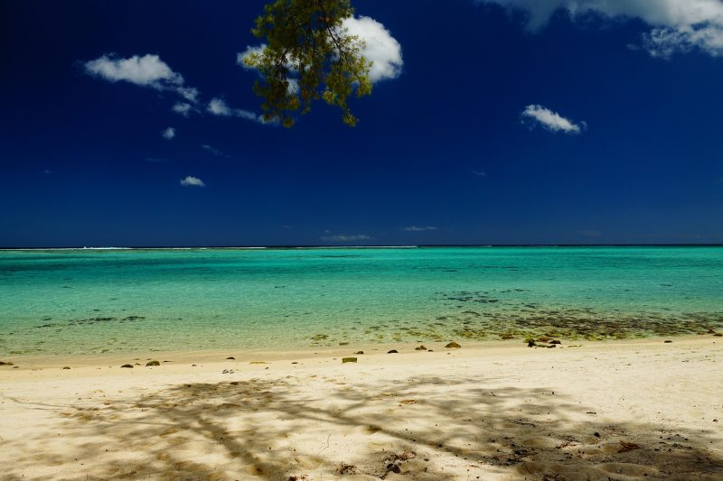 Mauritius beach is a perfect snorkeling spot for beginners