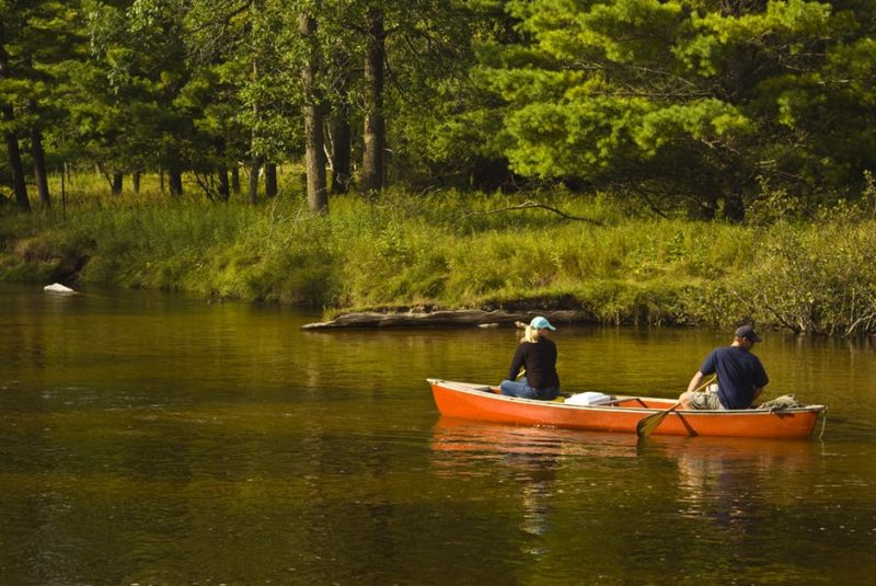 The best way to get close to the wildlife here is by canoe