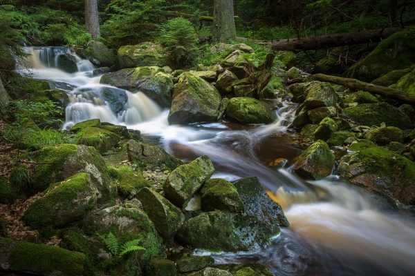 Streams and other sources of running water is what you need to look for if you have forgotten your stash of drinking water.