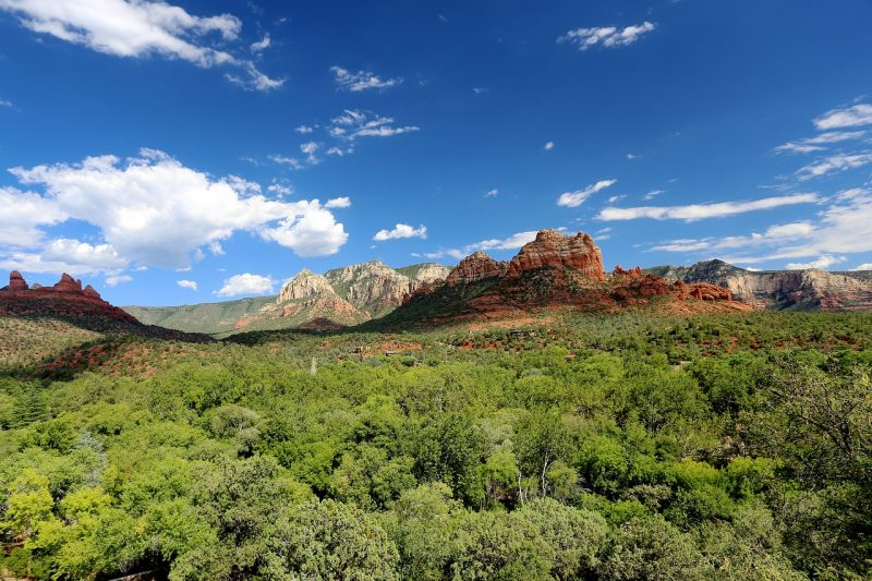 Coconino National Forest, Arizona.