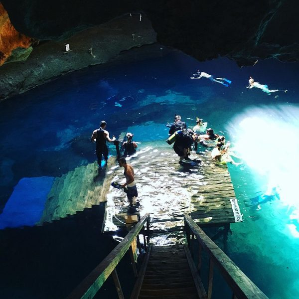 Devil's Den Cave in Florida – Author: Matthewjparker – CC BY-SA 4.0
