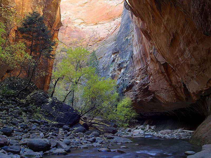 The Virgin River Narrows in Utah