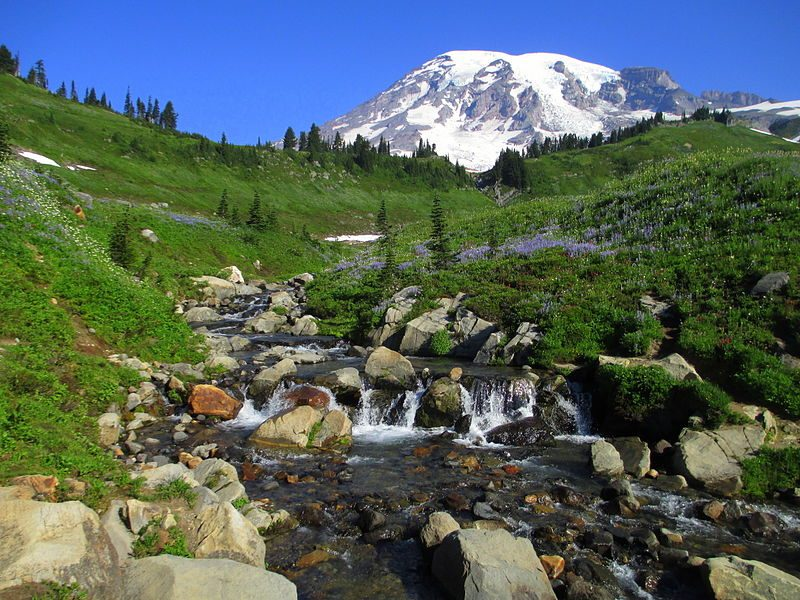 Mount Rainier from above Myrtle Falls in August – Author: Samuel Kerr – CC BY-SA 3.0