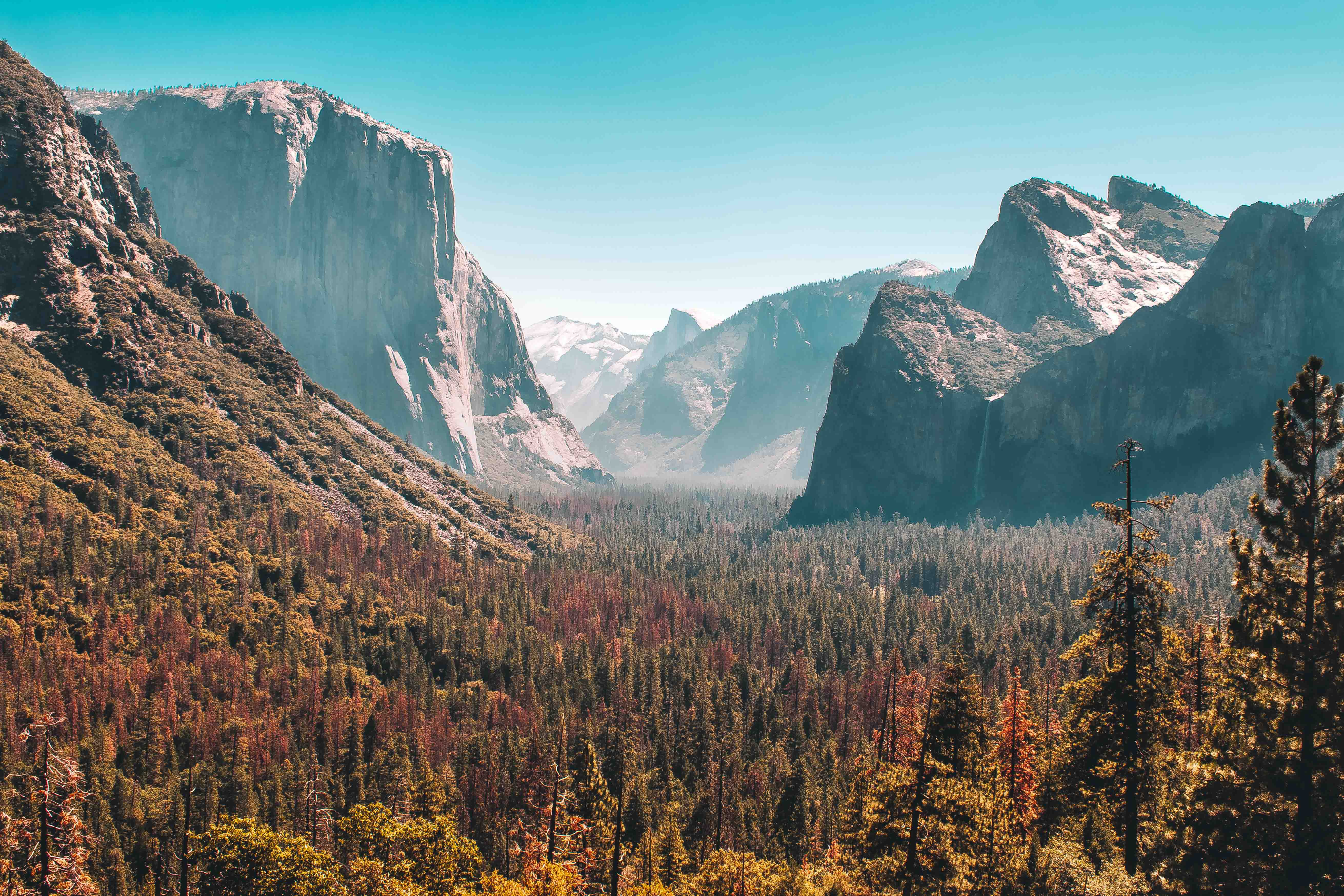 Visiting Yosemite National Park? Check out this guide.
