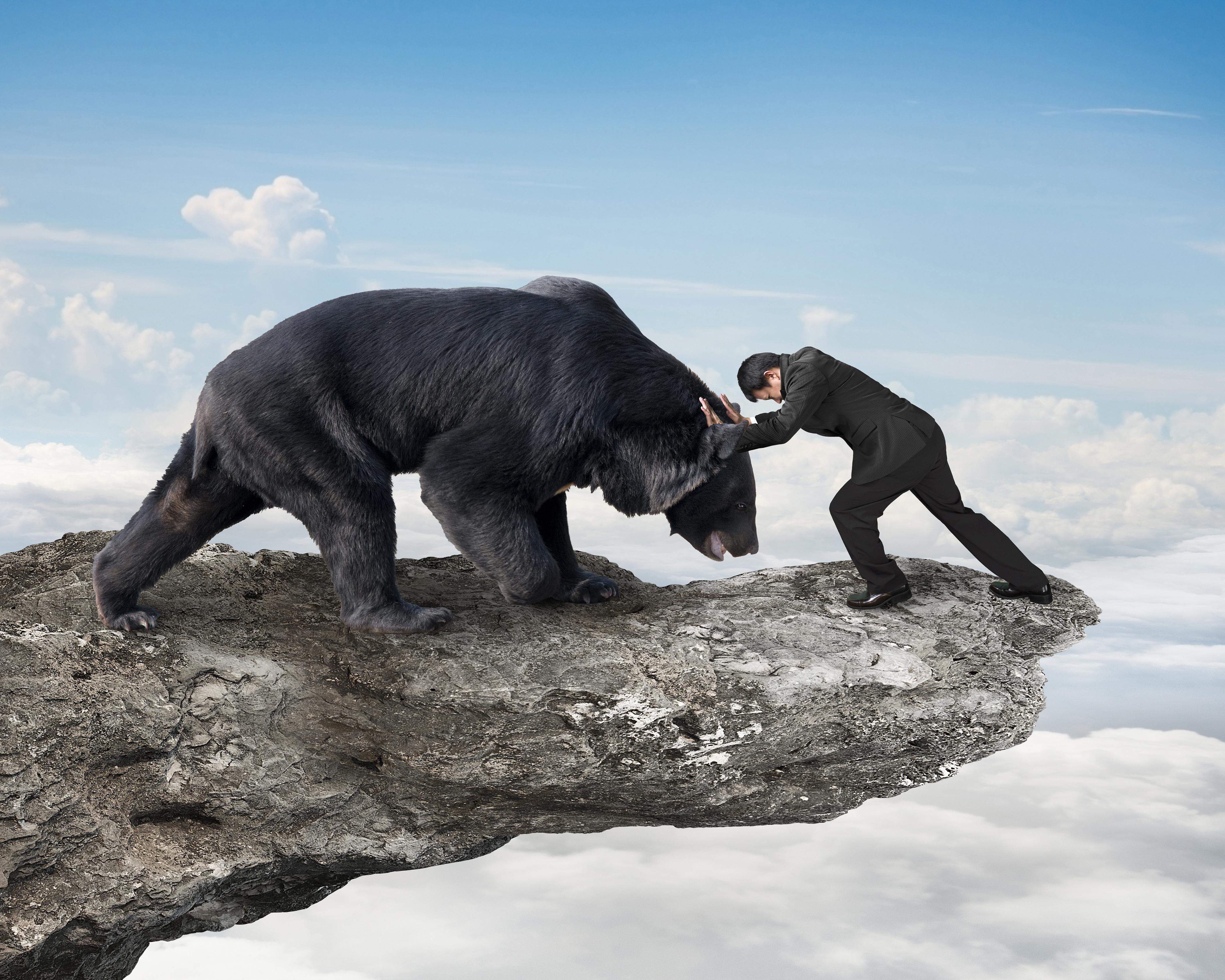 Man Fights Bear; Bear Wins
