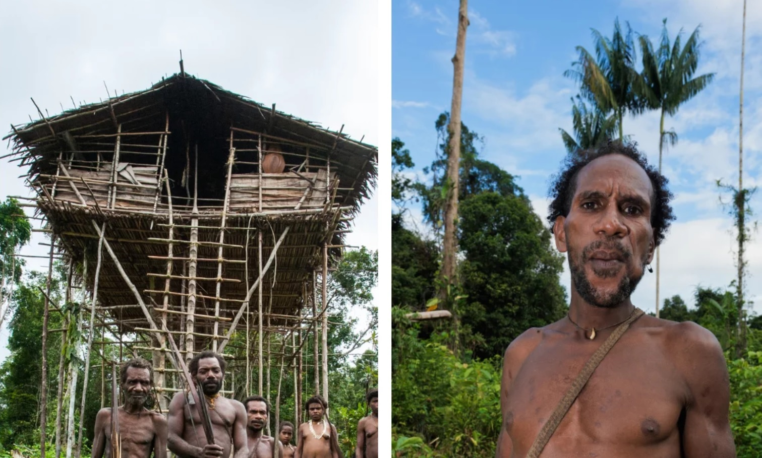 The Korowai Tribe Cannibals Of Papua New Guinea