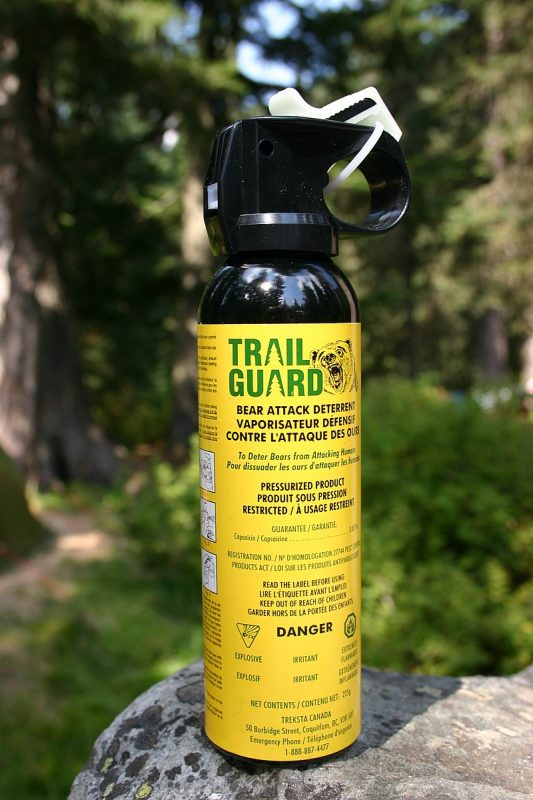 If you are going to be in areas where there may be bears, it's extremely wise to be armed with, and know how to use, bear spray – Author: Arne Nordmann – CC BY-SA 3.0