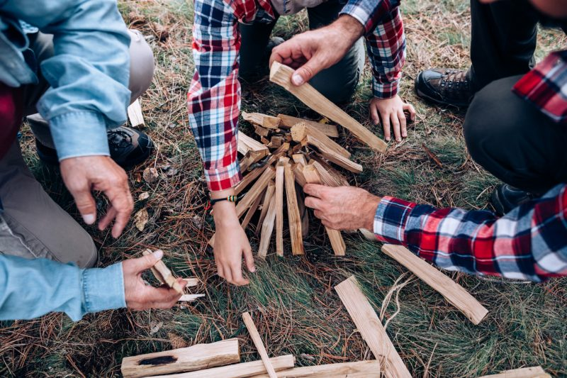 Get dry woods and set it up in a campfire style with your wood standing up