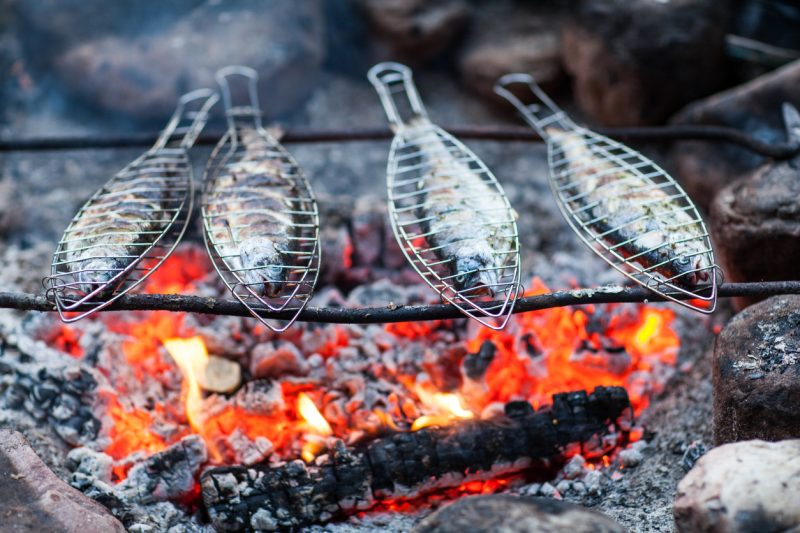 Grilling fish on a campfire