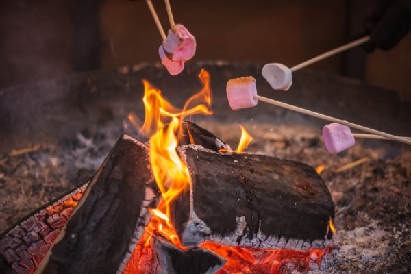 Building a successful fire can mean anything from roasting marshmallows to keeping yourself dry and warm in a survival situation