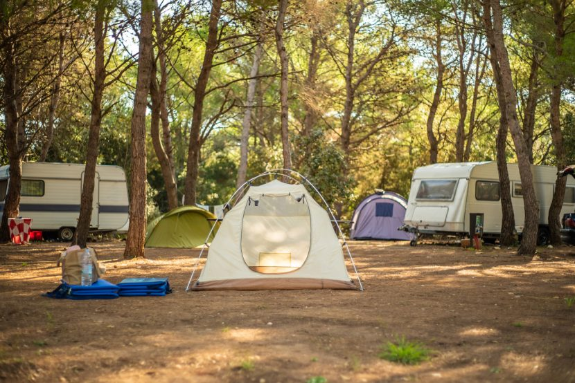 View of tent in camp ground in the middle of pine forest.