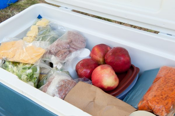 A cooler is essential for keeping food in good condition on your camping trip