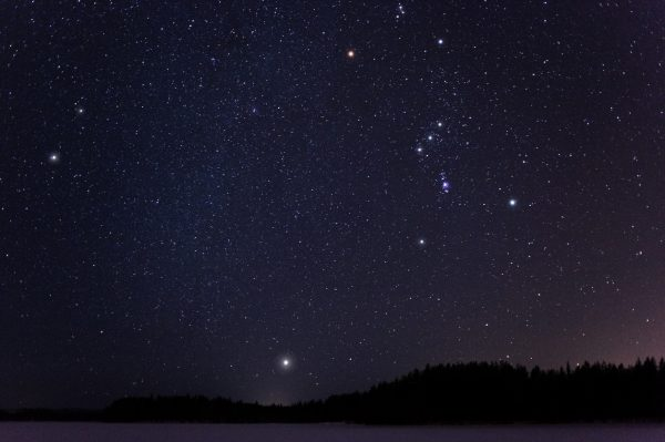 Use the stars to help you navigate at night.