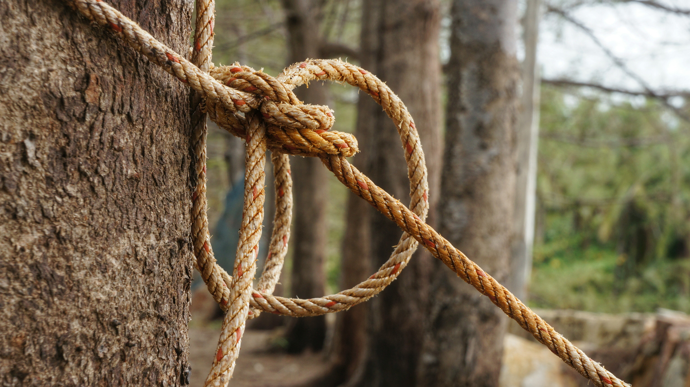 Knowing these knots will get you through most situations you will encounter