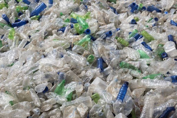It's a sad fact, but right now the oceans are riddled with plastic that does a lot of damage to marine life.