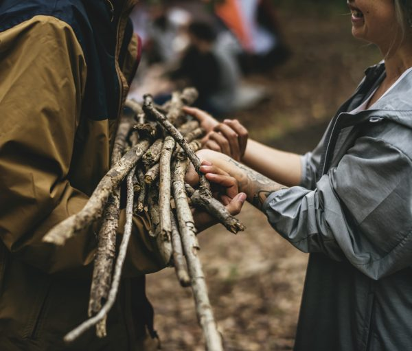 Collect kindling and smaller sticks before moving onto larger logs