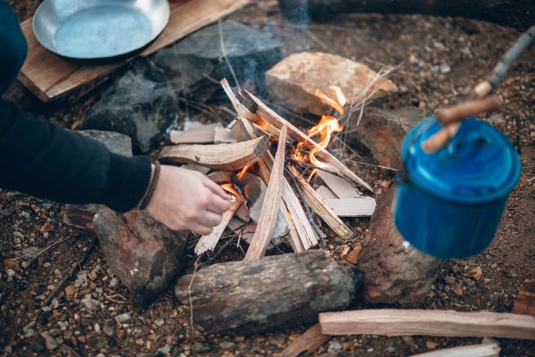 Start with small pieces of wood, moss, dry grass, cotton, and wood shavings for your kindling to get your fire going.