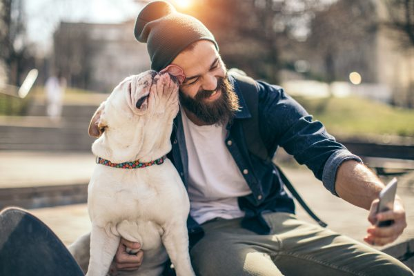 A new study shows that the typical man's beard contains more germs than the typical dog's fur…