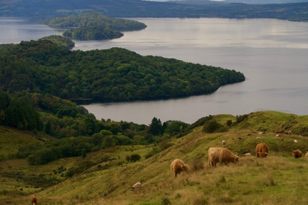 The view from Conic Hill on Loch Lomond.