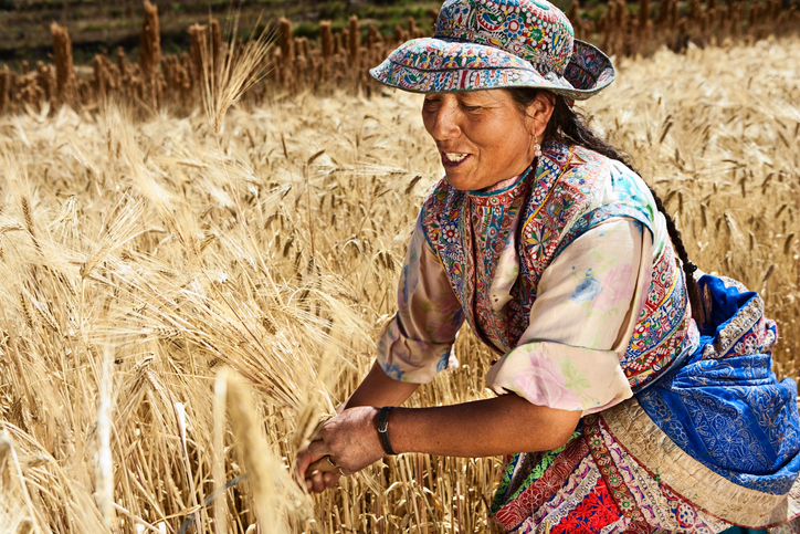 Native people followed a natural cycle of farming