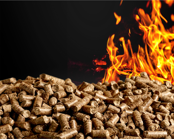 You can also use wood pellets in the Firebox