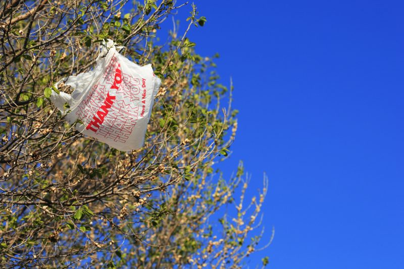 It will take 500 years for a plastic bag to degrade