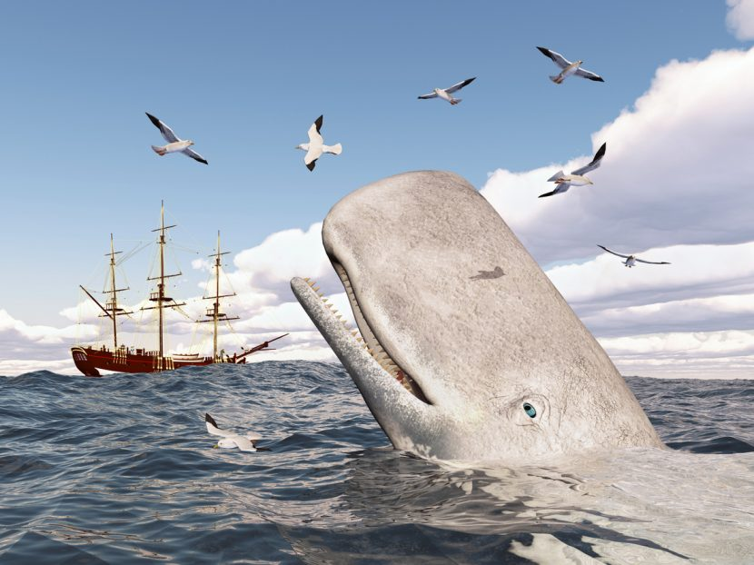 Trades – Whaling