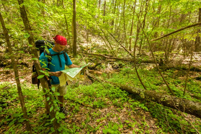 Use brightly-colored bandanas to signal for help because they naturally stick out against the green foliage