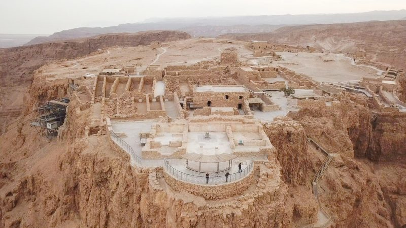 In 1973, a few date seeds were taken from Masada, a UNESCO World Heritage site and an ancient fortress of historic importance at the plateau top of a rock mountain