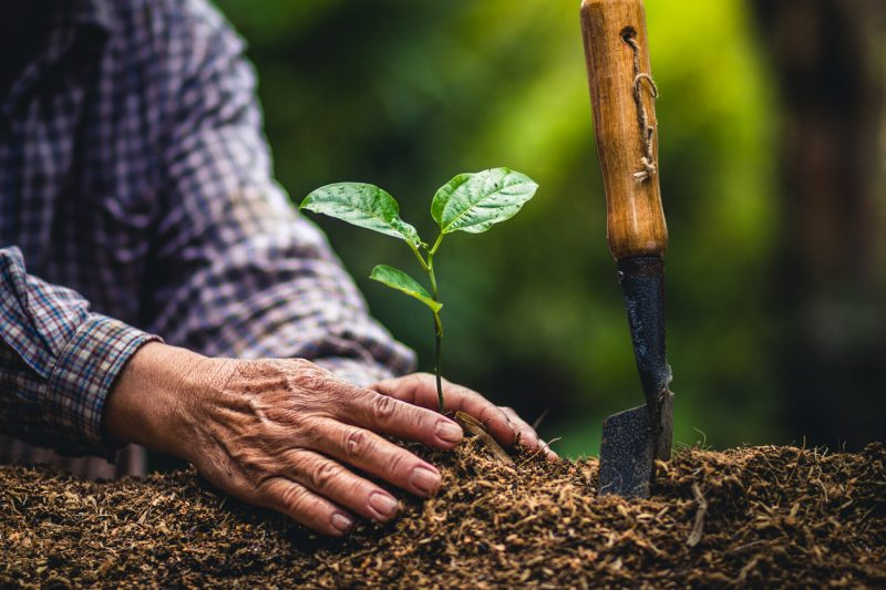 Estimates are that, by planting 100 million trees, carbon reduction would be 18 million tons, saving American consumers almost $4 billion annually on utility bills