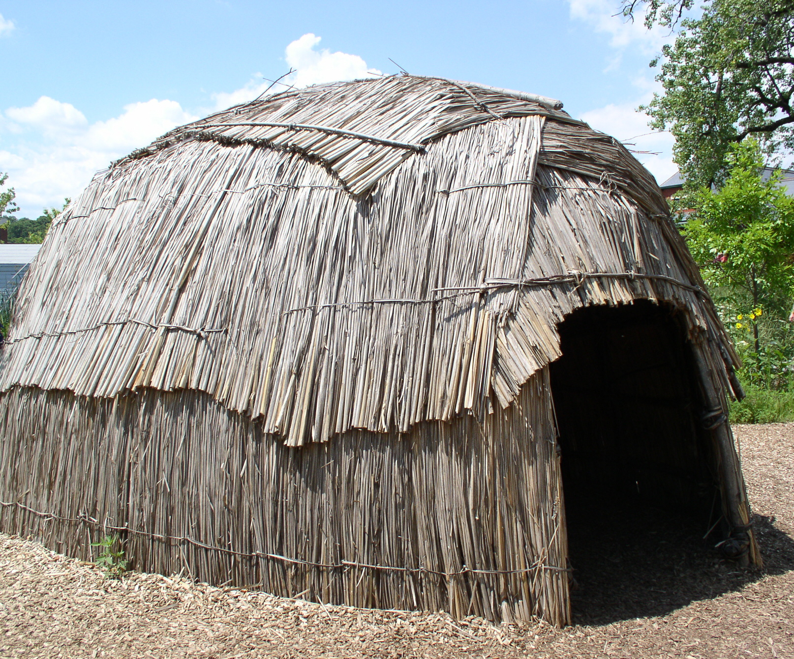 Survival Shelter - The Wigwam