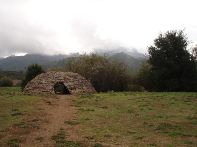 A wigwam is a permanent hut, made of saplings and tree bark